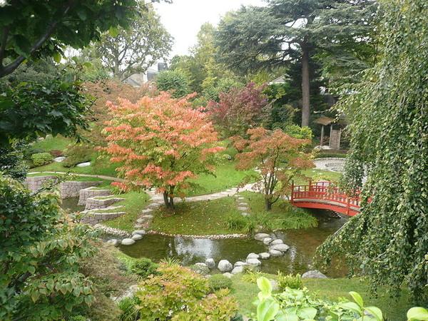 Image jardin maison for Beaux arbres de jardin