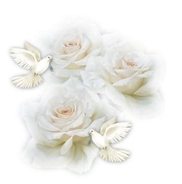 rose blanche tourterelle. Black Bedroom Furniture Sets. Home Design Ideas